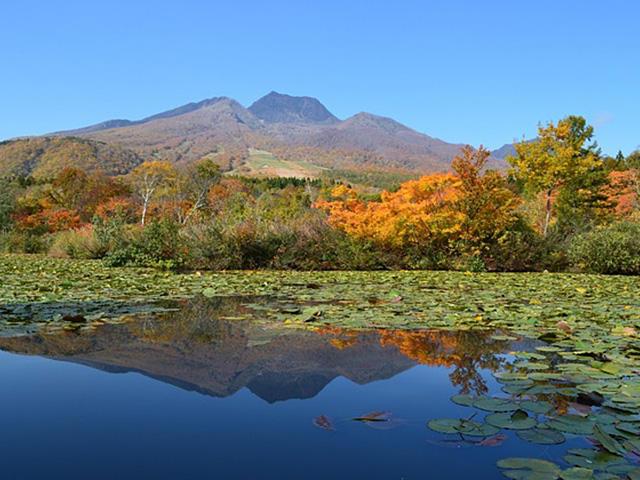画像:いもり池と妙高山