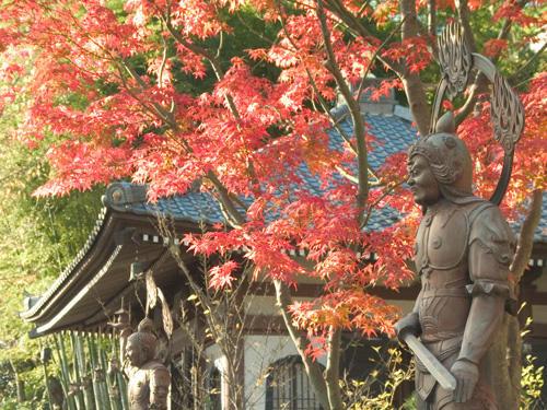 画像:長谷寺の紅葉
