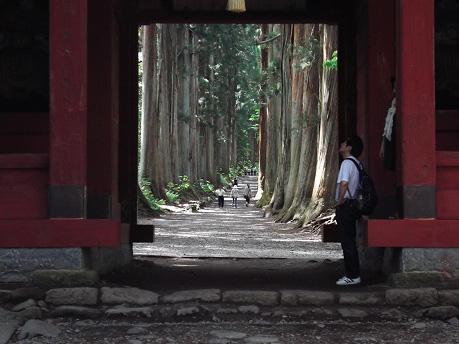 画像:戸隠古道
