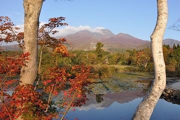 画像:いもり池まで徒歩5分