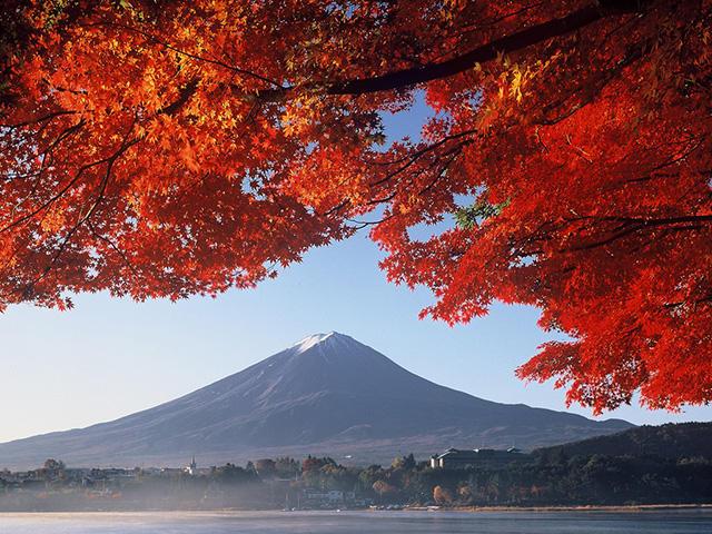 画像:富士山と紅葉