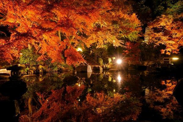 画像:長谷寺紅葉ライトアップ