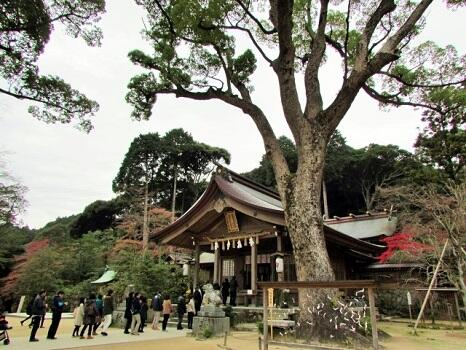 画像:宝満宮 竈門神社